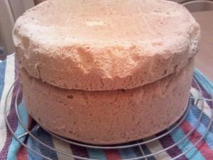 Biskuitboden Torte